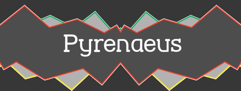PYRENAEUS: Piriniar kulturetako ekarpenak saretzen.
