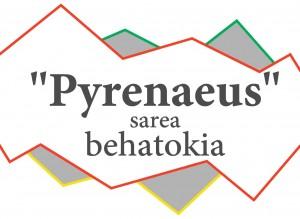 pyrenaeus-1