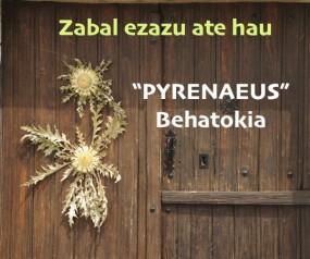 puerta 2 eguzki esuskeraz